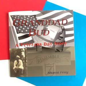 "Image of veterans day book cover showing a sailor in the bottom left corner and an american flag across the cover with a cross gravestone that says ""remember"""