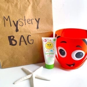 "Brown paper bag with writing that says ""mystery bag"" in black marker and a bucket, sunscreen, and a starfish laying outside the bag"
